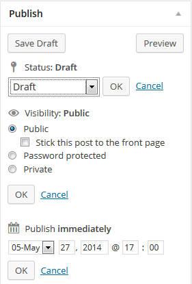 WordPress Publish Post Options